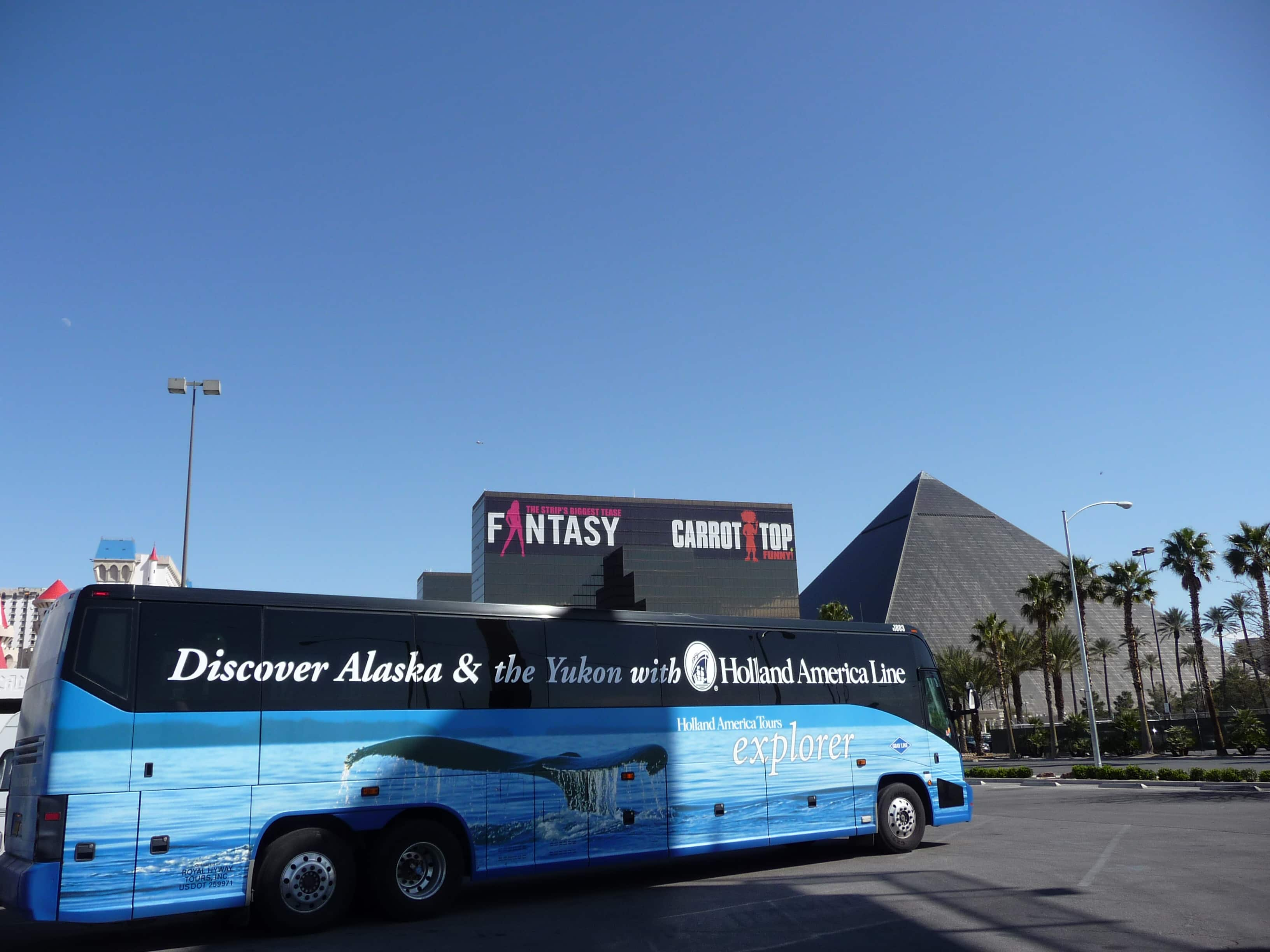 las vegas dating coach Las vegas day trips & excursions: check out viator's reviews and photos of las vegas tours.