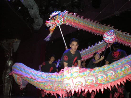 The Dragon Dance Team during a Hong Kong Cultural Arts Show on Amsterdam.