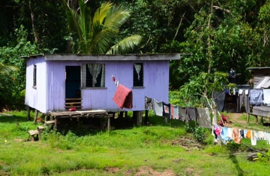 We saw many houses made of tin and painted in bright colors on our drive to Pacific Harbor.