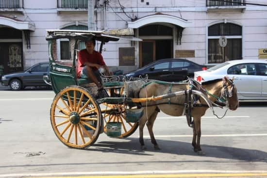 Horse and carriage 'taxi.'
