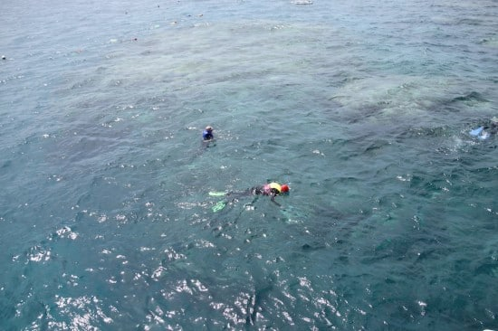 Snorkelers in the Great Barrier Reef. Photo courtesy of Captain Mercer.