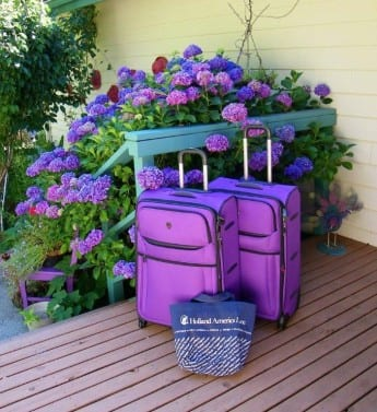 Packing in Purple for Next HAL Cruise