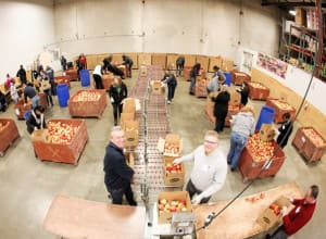 Holland America Line President and CEO Stein Kruse, left, helps pack apples with Director of Public Relations Erik Elvejord at Northwest Harvest.