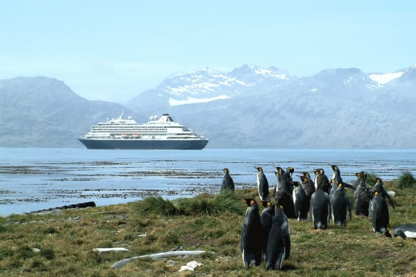 The penguins of South America welcome Prinsendam and its guests!
