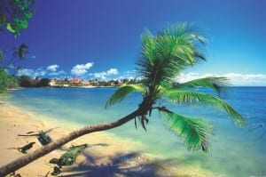 The Caribbean ranks as the top cruise destination.
