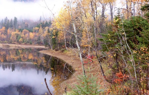 Postcards from Canada and New England | Holland America Blog