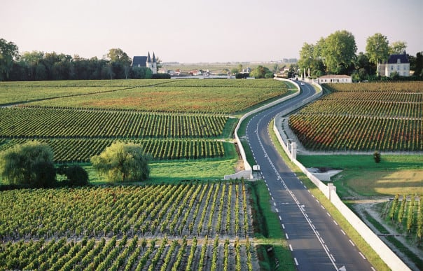Medoc Vineyards in Bordeaux, France.