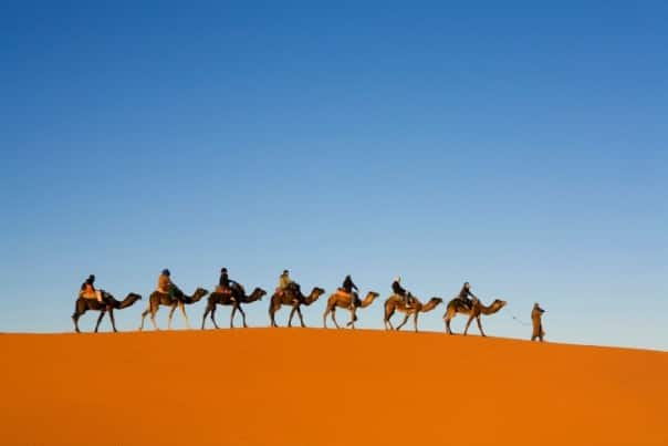 Enjoy a camel ride in Morocco.