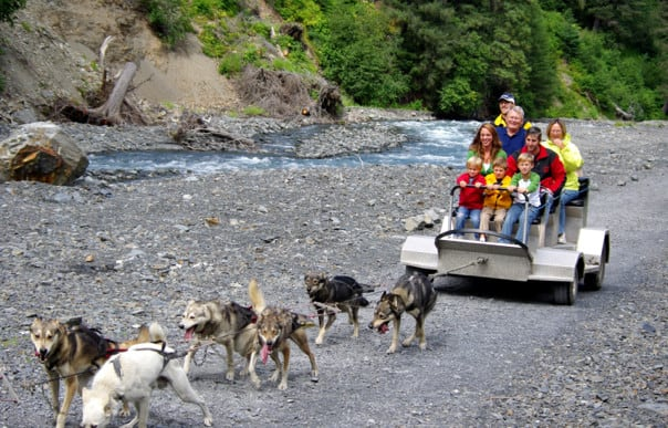 Alaska is featured in Summer on Sale, and the 'Ididaride' Wilderness Sled Dog Ride shore excursion in Seward is a family favorite.