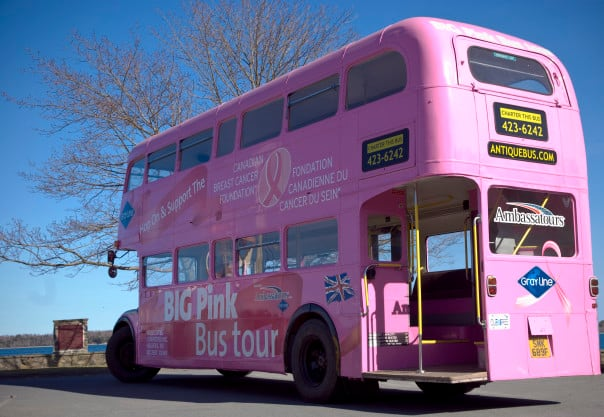 Kids are free to hop-on and hop-off the pink double decker bus at Halifax.