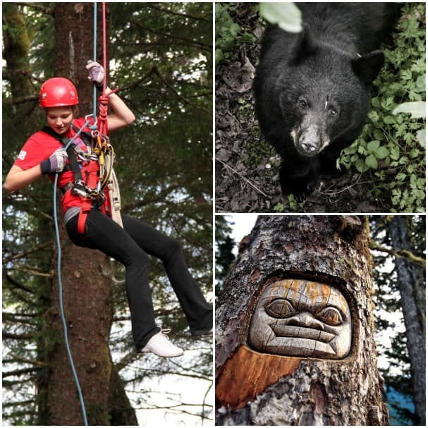 Clockwise from left: Alaska's Ultimate Canopy & Ziplining Expedition tour is a favorite in Juneau, black bears are often seen around town and a Messenger Living Tree Carving.