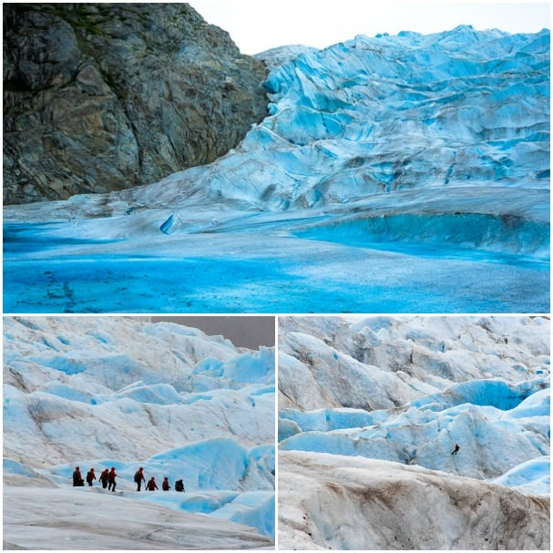 Mendenhall Glacier is just part of the Juneau icefield, which extends some 1,500 square miles. Photos courtesy Steve Schimmelman.