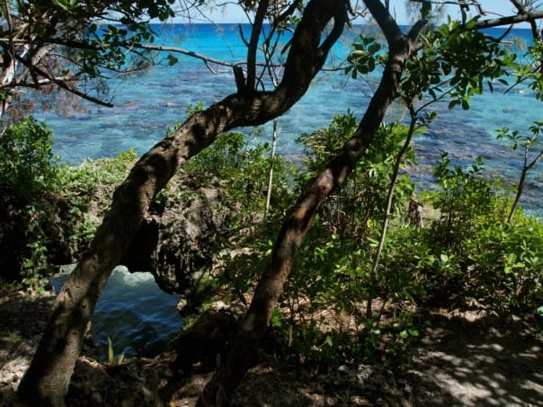 Lifou, New Caledonia is postcard-worthy.