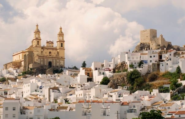 The white-washed village of Olvera in Cadiz.