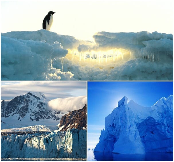 Antarctica is a photographer's dream.