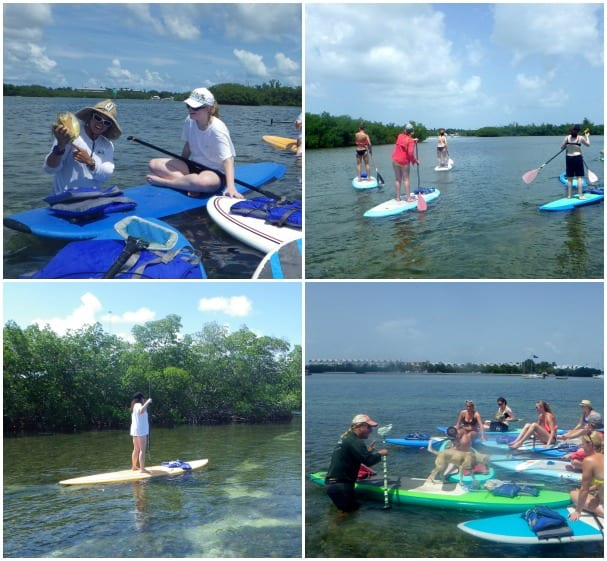 The stand-up paddleboard tour in Key West explores the area's stunning landscapes. Photos courtesy of Lazy Dog tour operators.