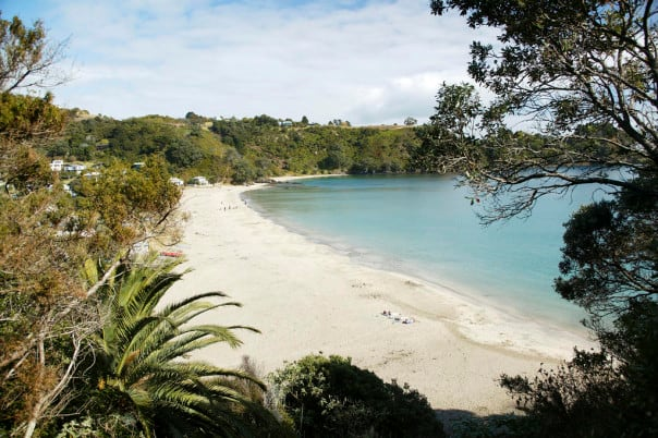 Blissful beaches, gastronomical treasures and small wineries make Waiheke Island, New Zealand, an incredible destination.