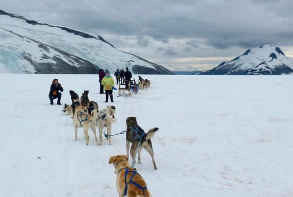 "Alaska is full of unique experiences. Maggie Morris said: ""Huskies on snow in the middle of August, just couldn't believe it. What an amazing excursion."""