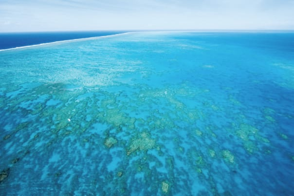 Guests get to experience the Great Barrier Reef twice on this Collectors' Voyage.