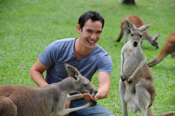 At the Lone Pine Koala Sanctuary guests can hand-feed a kangaroo.