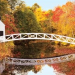 Hello, Fall! Enjoy Autumn's Vibrant Hues With a Canada & New England Cruise
