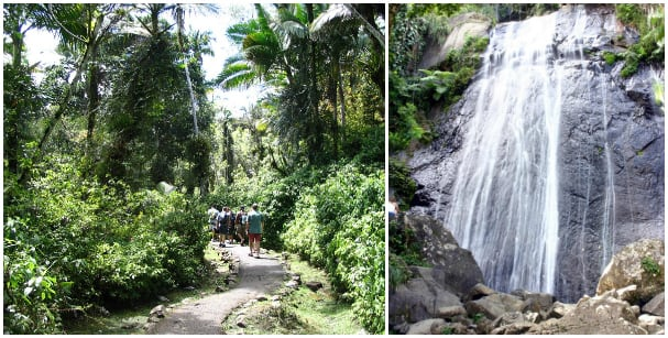 You can hike a rainforest and swim in a waterfall at El Yunque.