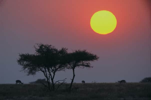 There's no sight as spectacular as an African sunset.