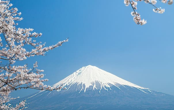 On a clear day guests will be rewarded with a view of Mt. Fuji on a tour from Yokohama.