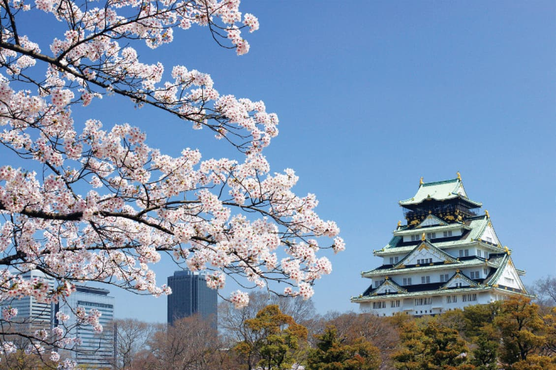 Celebrate Japan S Cherry Blossom Festival On An Iconic Event Cruise