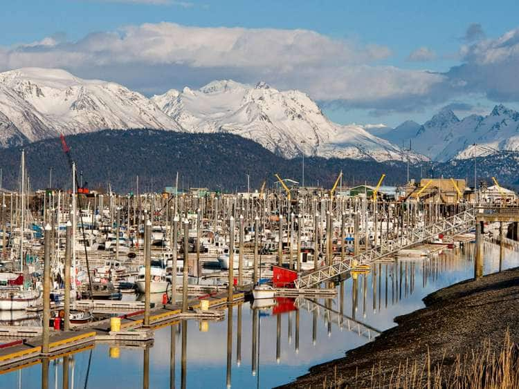 View of Homer, Alaska cruise port
