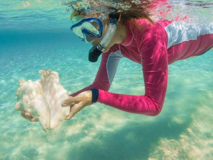 Woman snorkeling with a shell.