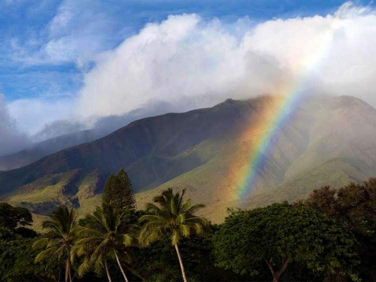 Rainbow on a lush mountainside in Maui on a Hawaii Cruise