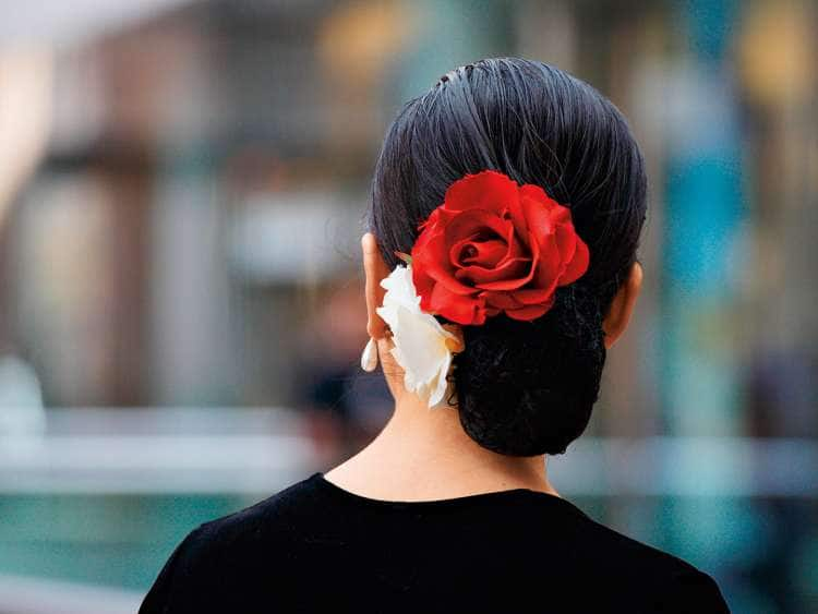 A picture of a Seville dancer with a rose in her hair seen while on a Holland America Line transatlantic cruise